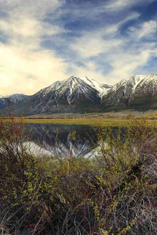Print of Jobs Peak Reflected in a Flooded Field in Carson Valley