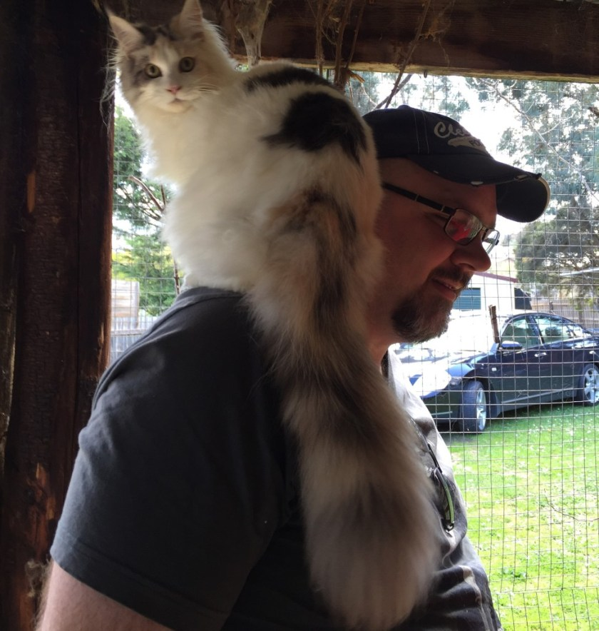 Is she a parrot or a kitten?