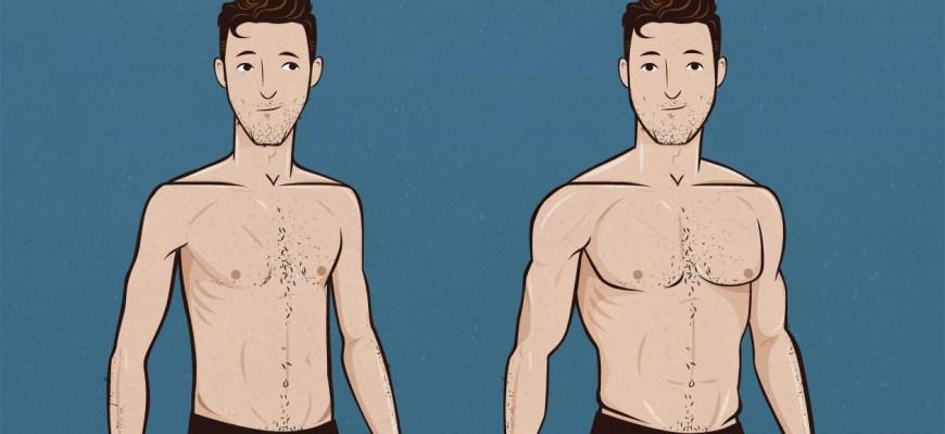Как набрать вес эктоморфу?