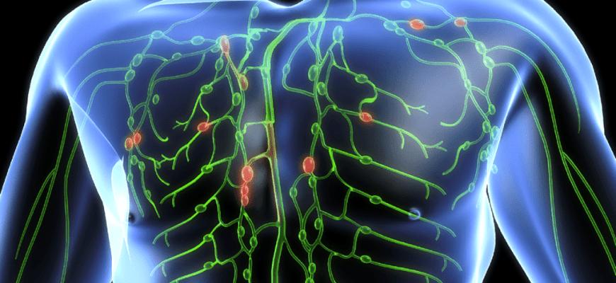 лимфатическая система застой лимфы