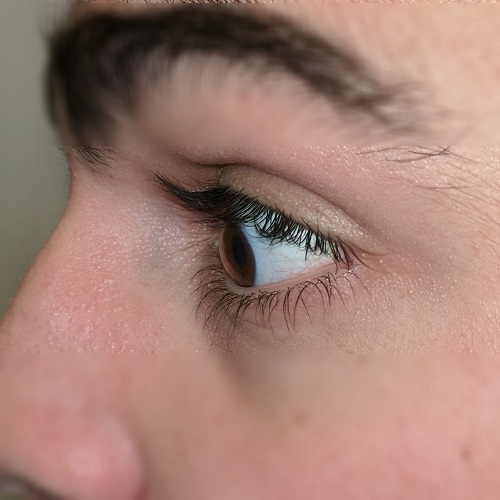 left profile eye picture