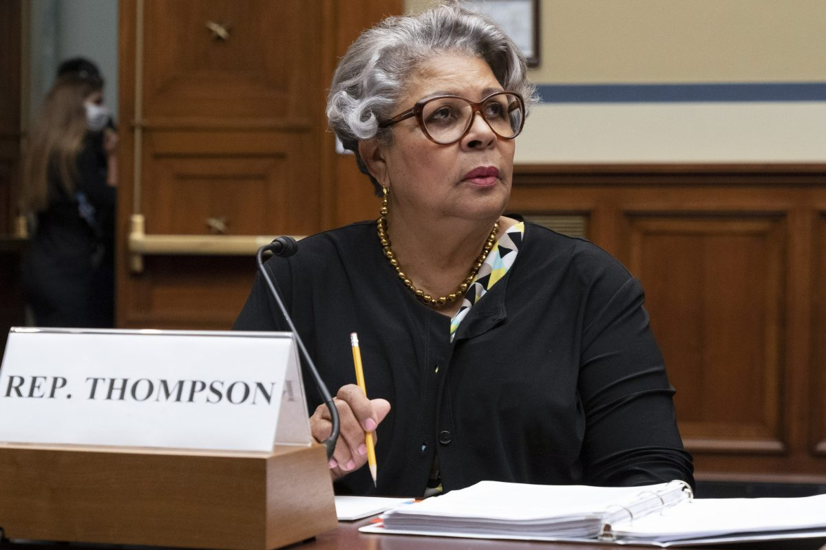 TX Dems call for national voter protections at congressional hearing
