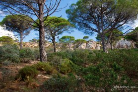 Hike near Tarifa