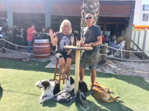 Partydogs