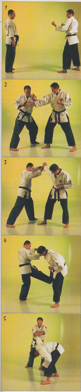 Yawara-Jitsu > Yawara-Kubotan