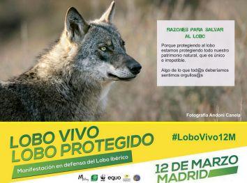 04-Sticker-LoboVivo