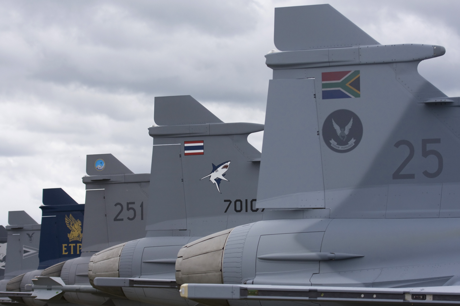 Image result for South African Gripen fighter