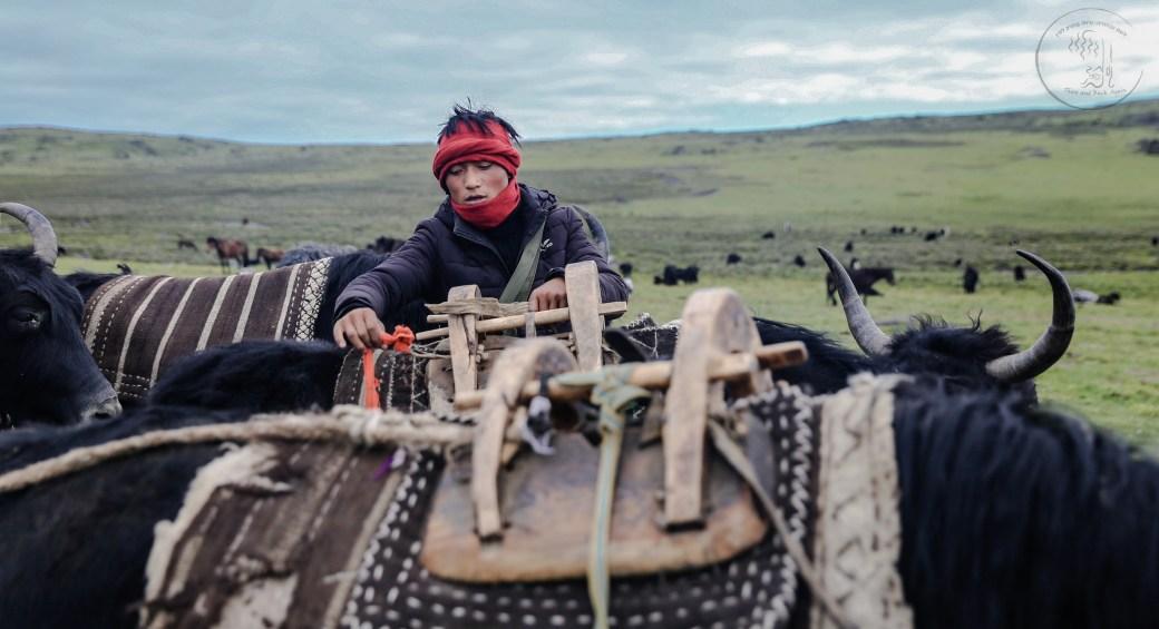 yak packing