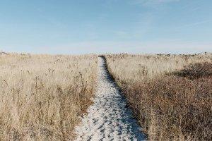 Un chemin de sable au travers des dunes
