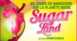 22.11 – Plan santé intercommunal – ciné club – les méfaits du sucre