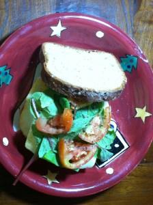 Bubba's Turkey Burger 1