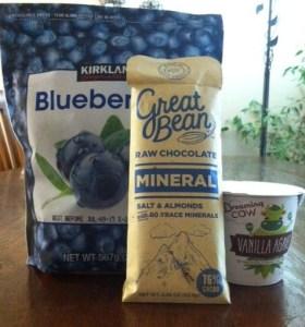 yogurt blueberry 2