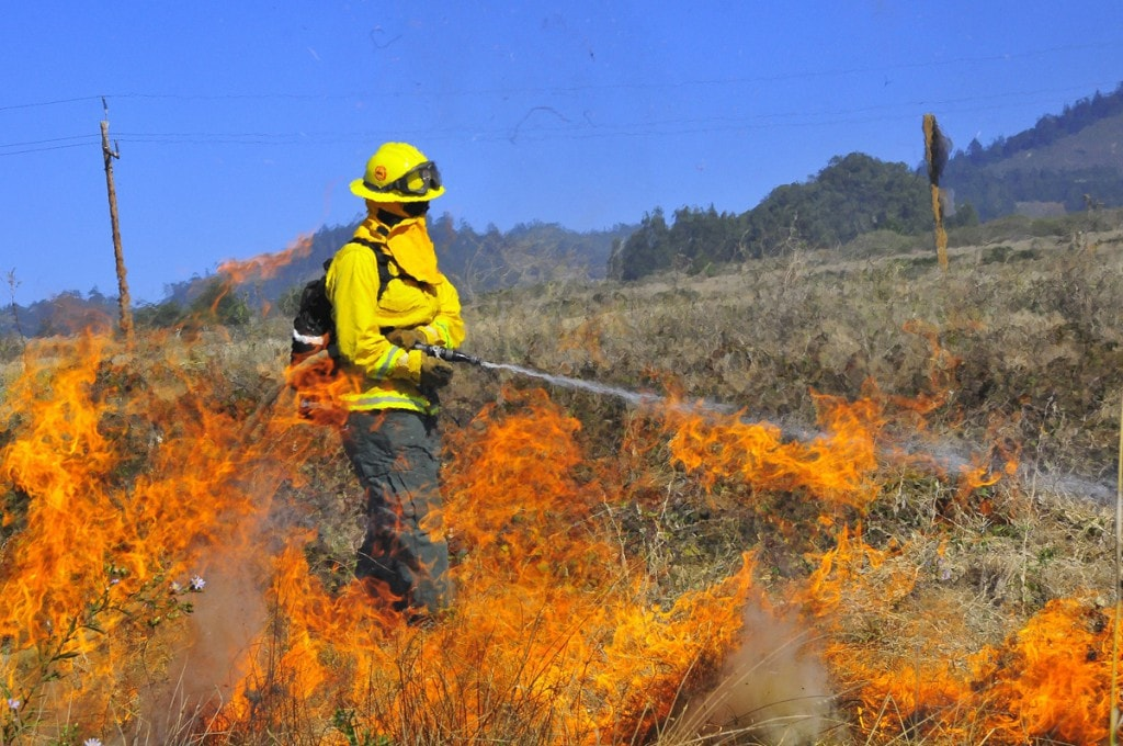 Wildland Firefighter Lake Superior College Degrees