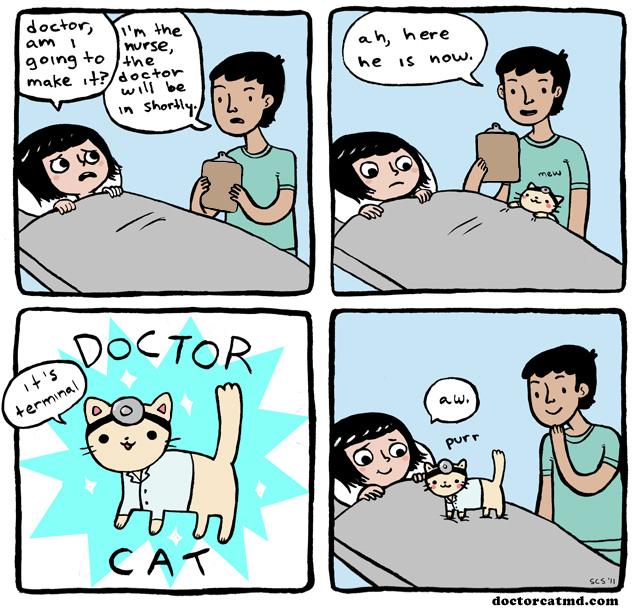 drcat
