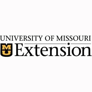 extension bigger