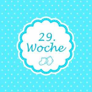 29. Woche Meilenstein Schwangerschaft Instagram