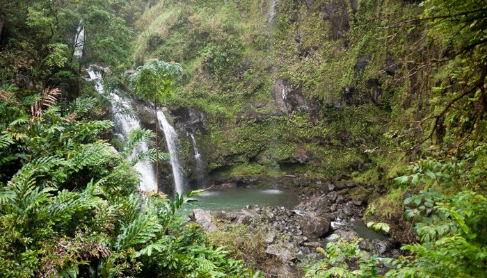 The Road to Hana, site of a recent Zayn Malik / One Direction fangirl moment