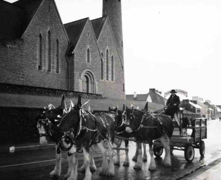 Trip to Donegal town with Clydesdale horses - Harvey's Point - Our Story