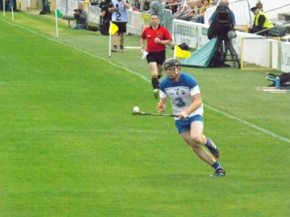 12 Waterford v Wexford 19 July 2014
