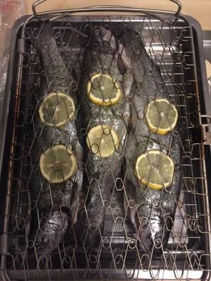 Fertig vorbereitete Forellen im Fischkorb