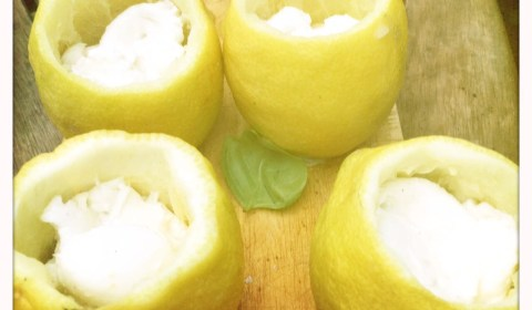 Deckel der Zitrone abschneiden, fruchtfleisch entfernen und mit Tomaten und Mozzarella füllen.