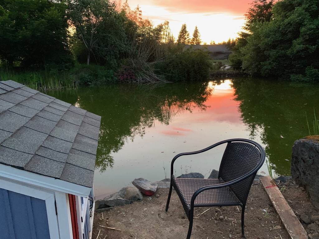 Sunset by the pond