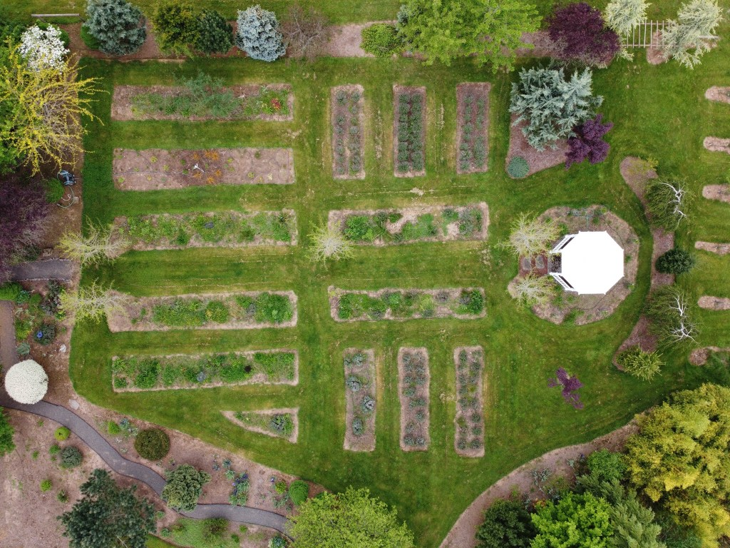 Aerial photo of flowerbeds