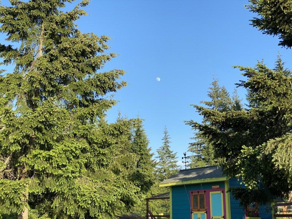 Moon over chicken coop
