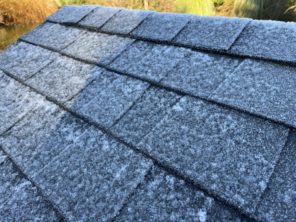 Frosty duck house roof