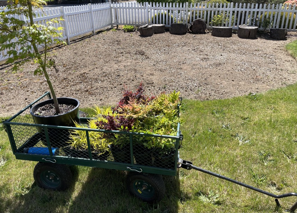 Cart with plants and empty garden