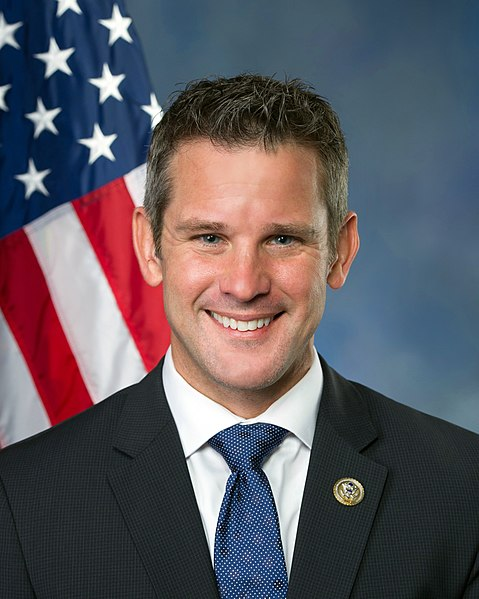 Kinzinger appears to win reelection