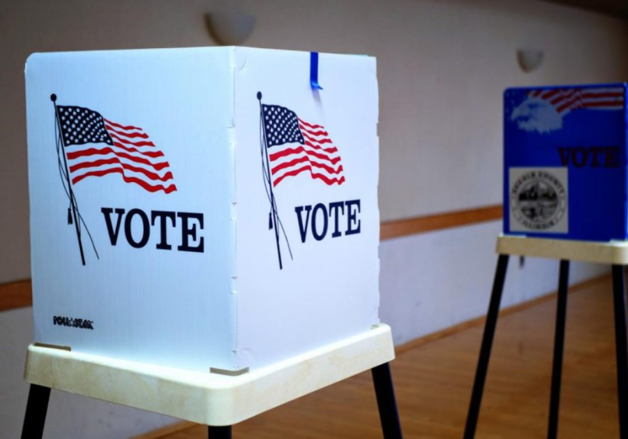 How To Vote In The 2021 Consolidated Elections
