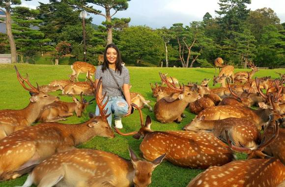 best-places-to-visit-in-japan-nara-park