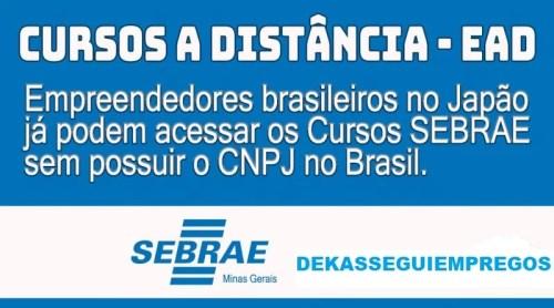 SEBRAE-MG – Viabiliza acesso aos Cursos EAD para os brasileiros no exterior que exigiam CNPJ