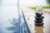 Tranquility scene of peaceful life at spa resort