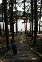 Hakone shrine entrance