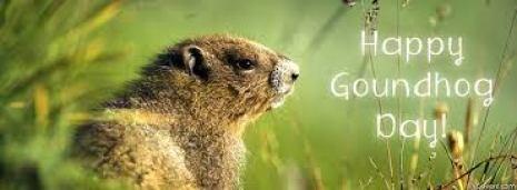 Groundhog-Day-Photos-1