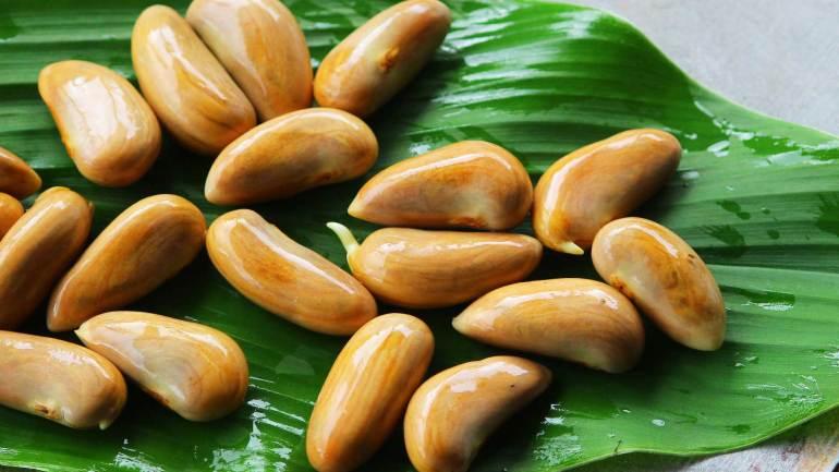 Jack-Fruit-Seeds-Kerala