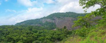 Malayattoor-Forest-Mountains
