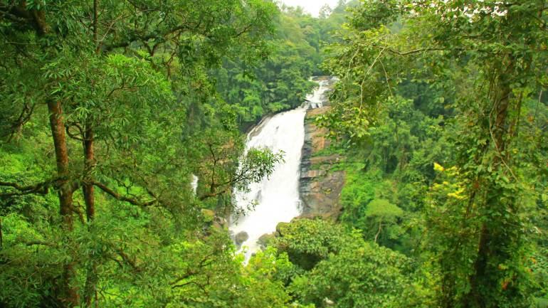 View-of-Valara-Waterfalls-surrounded-by-Forest-Kochi-Dhanushkodi-Munnar