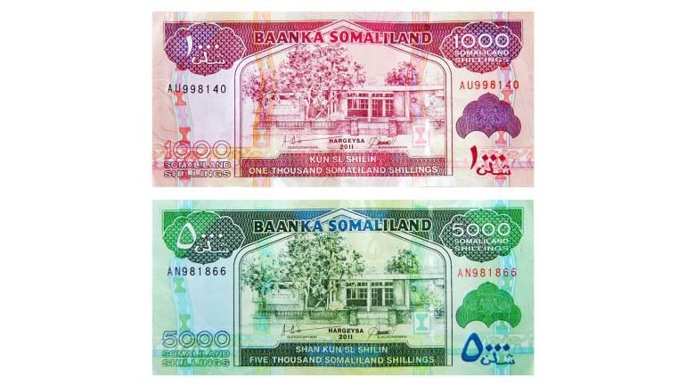 1000-and-5000-Somaliland-Shilling-(Somaliland-Currency)