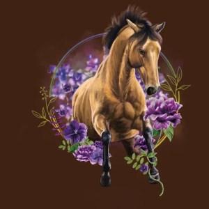 Amable Paard en Inzicht