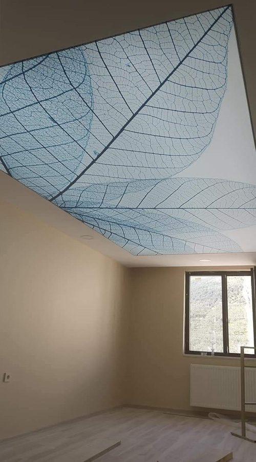 asma tavanlar66