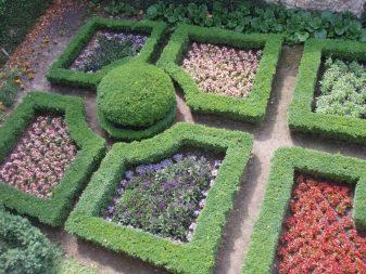 Как сделать цветники и клумбы цветущие все лето на даче ...