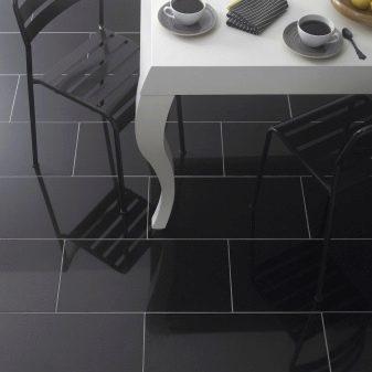 Черная напольная плитка (38 фото): глянцевая и матовая ...