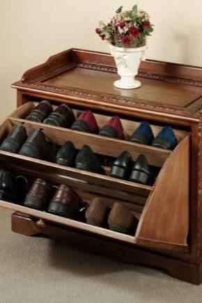 Полки для обуви в прихожую (62 фото): металлические ...