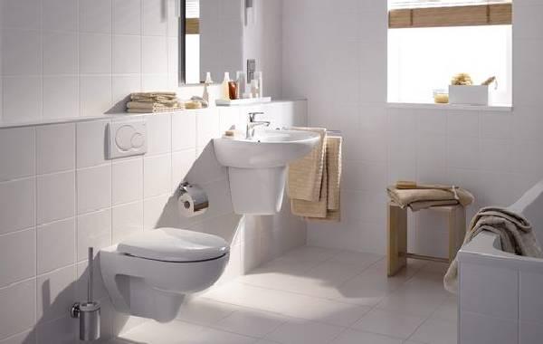 Çerçevesiz tuvalet fotoğrafı, fotoğraf 12
