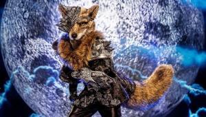 """Masked Singer """"Wolf"""" aangereden in Limburg"""