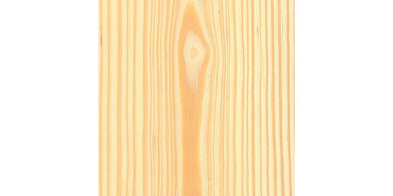 Pine (Sumatran).jpg