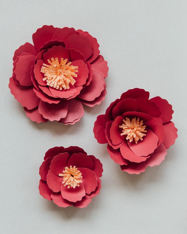 DIY Bunga Peoni Kertas 20.jpg